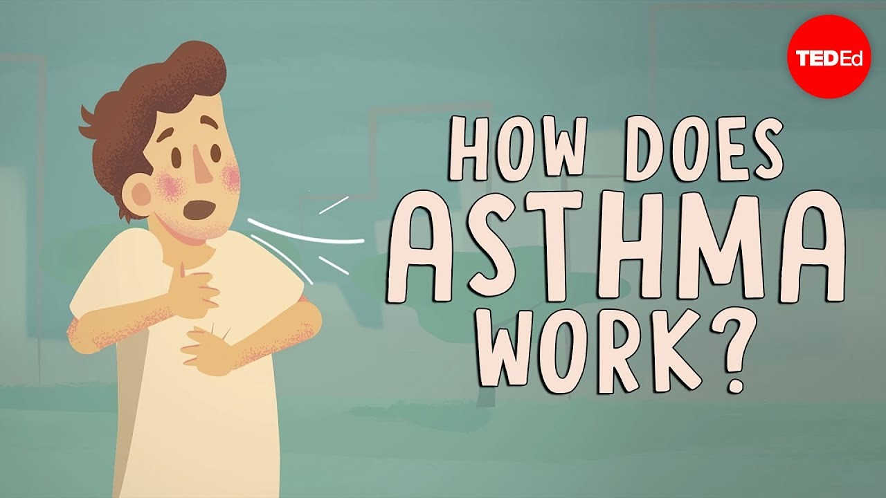 How Does Asthma Work  - Christopher E  Gaw