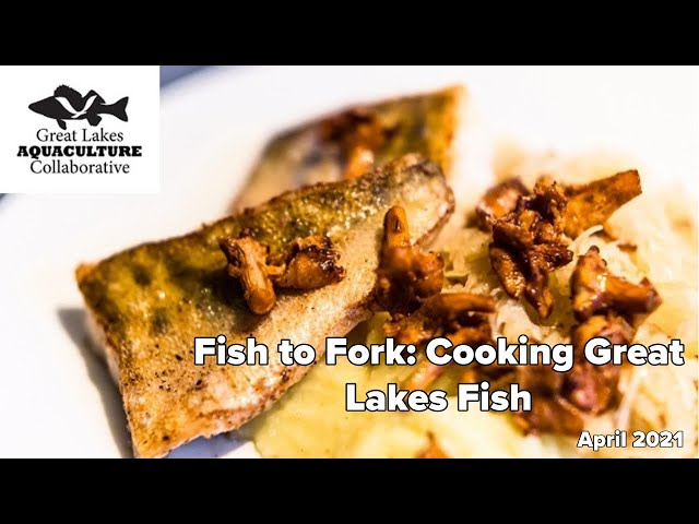 Fish to Fork: Cooking Great Lakes Fish April 2021