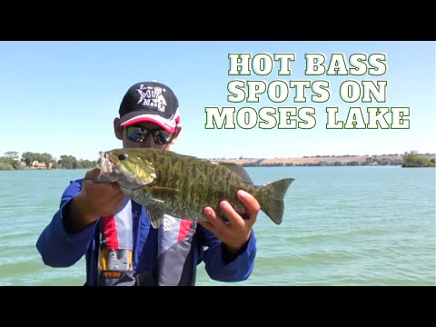 Moses Lake Bass Fishing