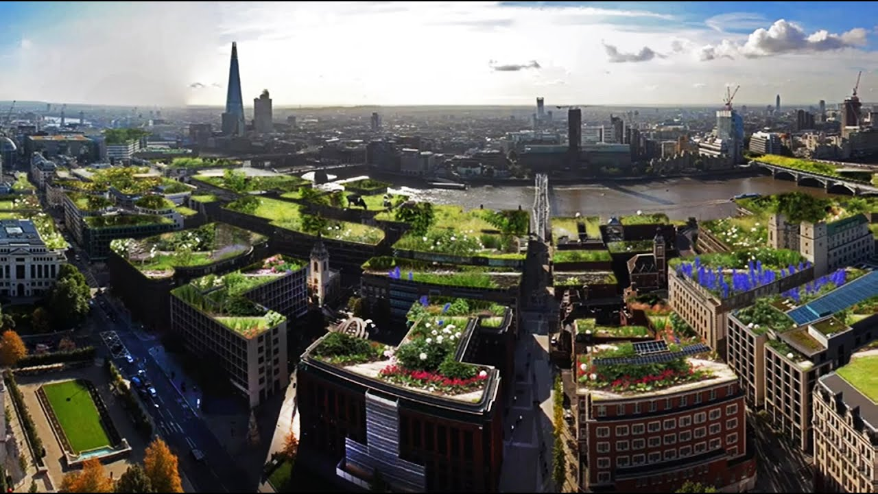 London Becomes A Roof Garden City With Green Living Roofs, Sky Gardens And  Sustainable Sky Parks   YouTube