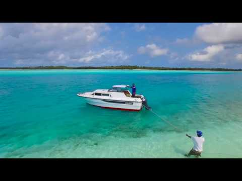 Drone Over Emerald Bay Pemba Island, Zanzibar