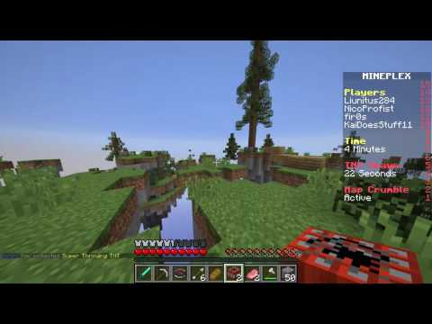 Mineplex Skywars! I HATE THESE HACKERS