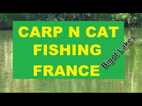 Carp And Cat Fishing France Bigot Lakes