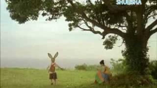うさぎ。バレエ。ストリングス。純情な思い。夏の終わりの物語。