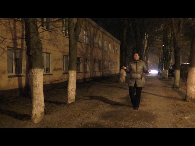 Изображение предпросмотра прочтения – НатальяПолухова читает произведение «В огромном городе моем ночь» М.И.Цветаевой