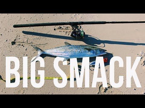 Big Spanish Mackerel | Beach Fishing in Galveston Texas |Texas Shore Fishing