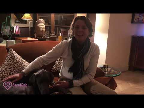 Exercice De Communication Intuitive Avec Les Animaux Avec Olivia De Dieudonné