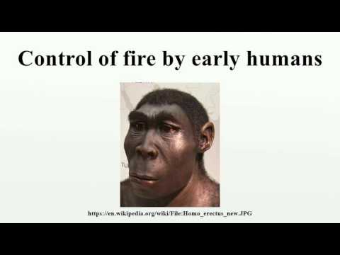 Control of fire by early humans