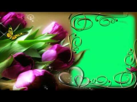 Рамки с цветами для видео монтажа, фона, заставок. Футажи. Хромакей.
