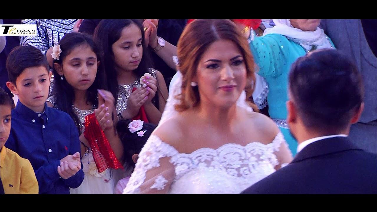 Kurdische hochzeit lehrte sänger eco terzan television wer denn sonst