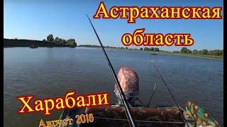 Астраханская область Харабали август 2018