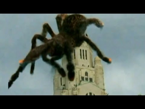 GIANT SPIDER ATTACKS PRESIDENT TROOPS CALLED IN MISSILES FIRED