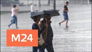 Следующая неделя начнется в Москве с заморозков и снега - Москва 24