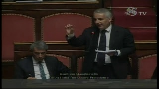 Milleproroghe, la discussione in Senato