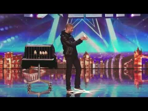 Видео: Darcy Oake Audition jaw-dropping dove illusions Britains Got Talent 2014