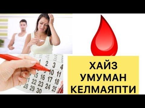 ХАЙЗ КЕЛМАСА НИМА КИЛИШ КЕРАК