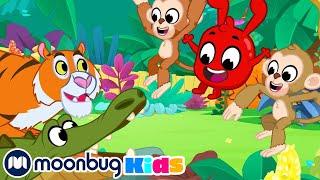 Morphle Explores The Jungle   Magic Pet videos for Kids   My Magic Pet Morphle
