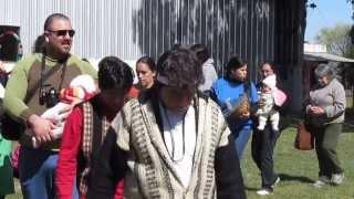 HERMANOS MAPUCHES DE LOS TOLDOS - CEREMONIA DEL REBROTE Y ENTUZUAMN
