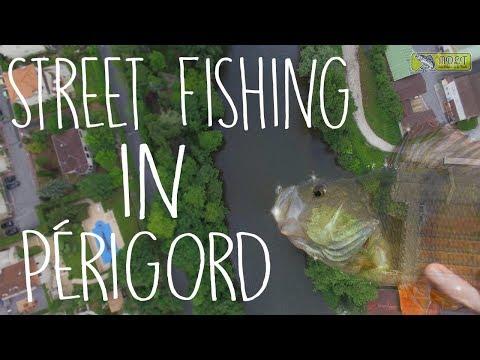 De ZÉROS à HÉROS ! Street fishing dans le PÉRIGORD (+English subtitles)