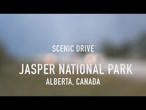 Scenic Drive - Jasper National Park, Alberta, Canada