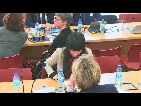 Stéphanie DO - Commissions du 22 février 2018 - revitalisation des centres villes