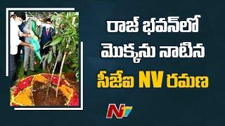 CJI NV Ramana Plants Sapling In Raj Bhavan After Meeting With MP Santosh | Ntv