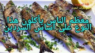 صدمة!! أغلب المواطنين يأكلون هذا السمك على أساس السردين! تعرف على خفايا و أسرار السردين