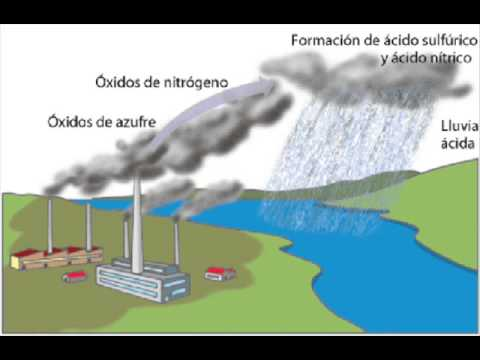Contaminación Ambiental Por Parte De Las Fabricas YouTube