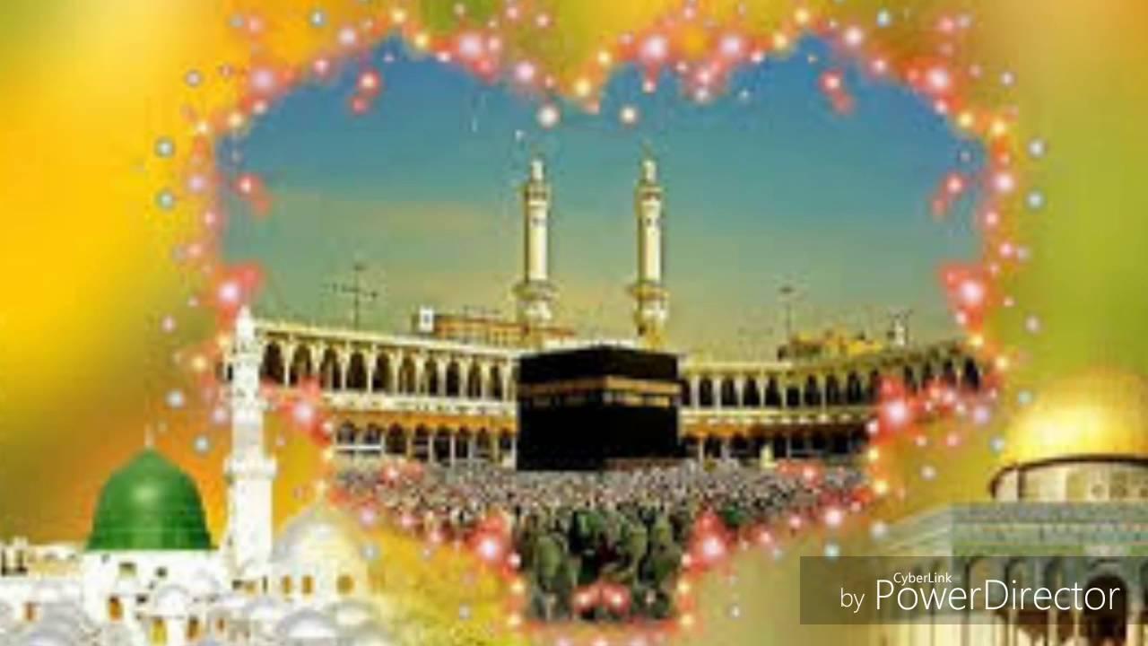 Zafar Niazi Qawwal HD MP4 Videos Download