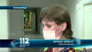 Обезумевшие доги растерзали девочку в Екатеринбурге
