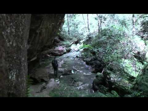 Kings Georges Brook canyon (Dry Section), Blue Mountains, Australia