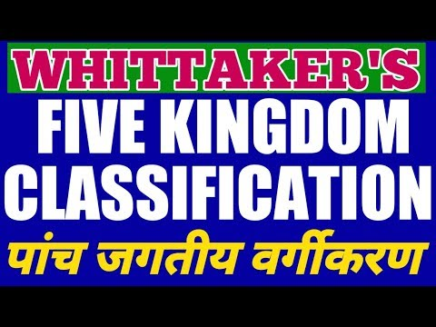 The 5 Kingdoms in Classification | 5 Kingdom Classification System|