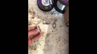 Pesca de Mojarra (Scup) en RI