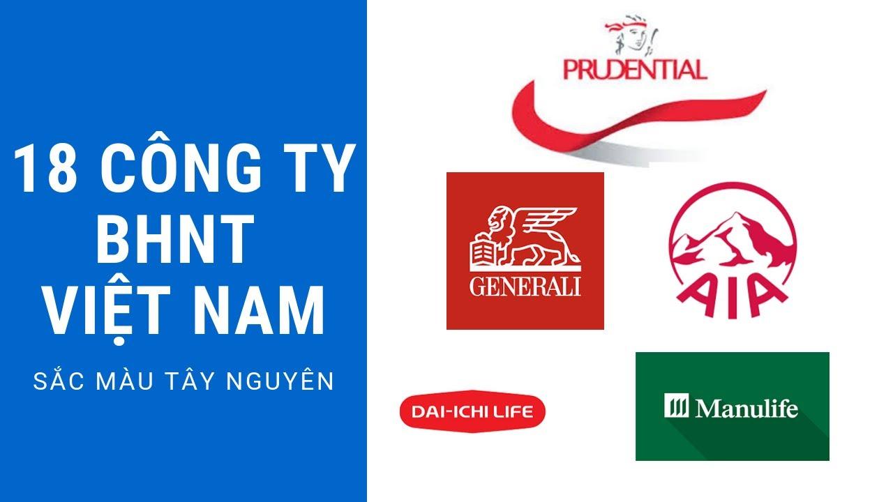 18 công ty bảo hiểm nhân thọ tại Việt Nam, nên tham gia với công ty nào?