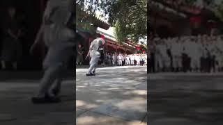 Great Martial arts