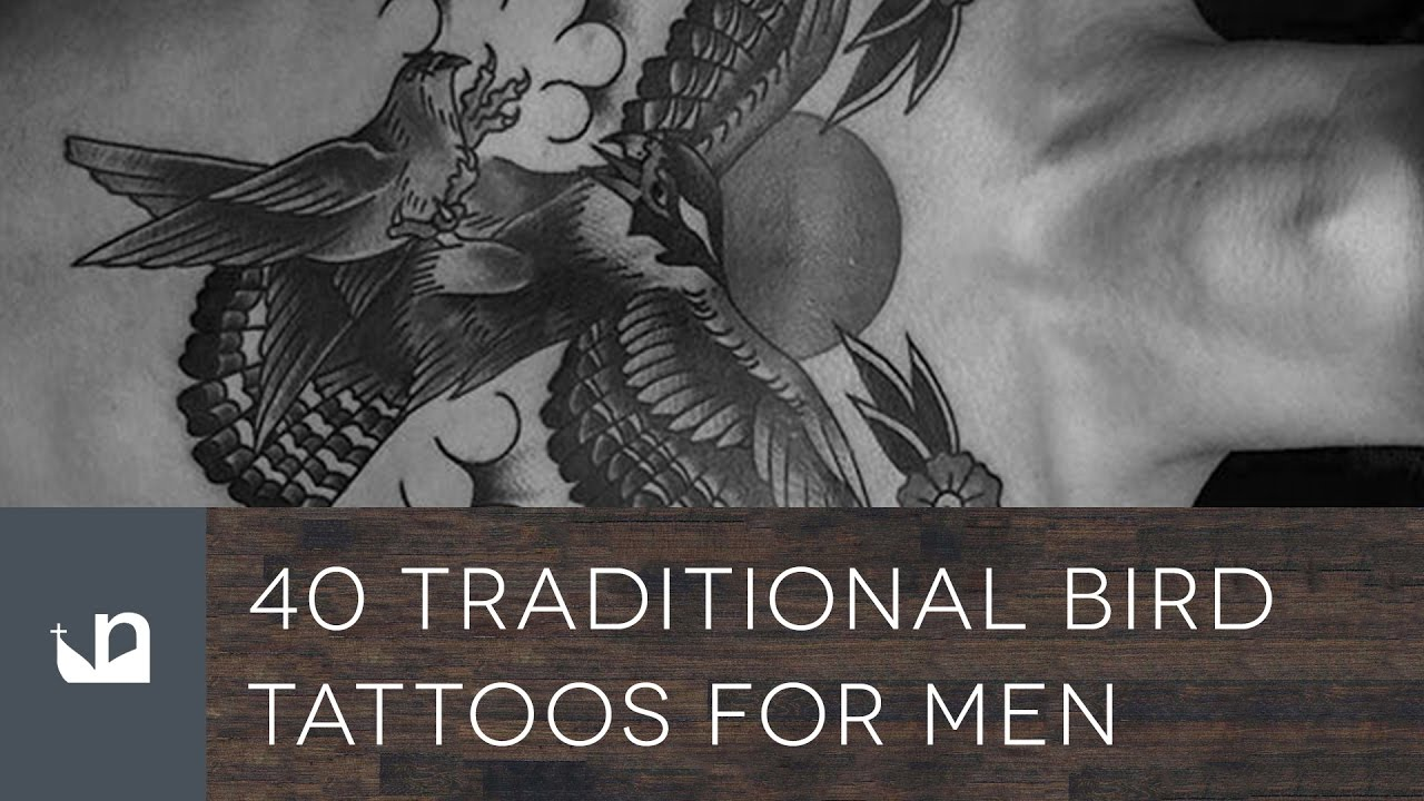 40 Traditional Bird Tattoo Designs For Men – Old School Winged Ideas