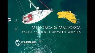 Menorca & Mallorca yacht sailing trip with whales