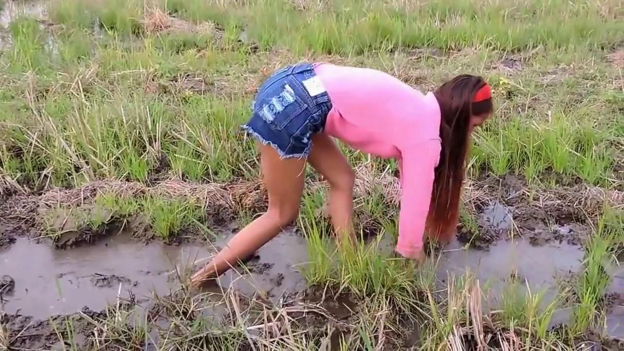 Sexy farm girl videos