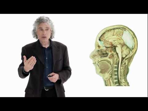 Steven Pinker: Linguistics as a Window to Understanding the