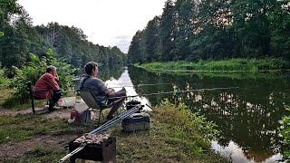 Рыбалка в Гипсе и на Костылях Рыбалка с Ночевкой на Реке Друть Ловим на Фидер Подлещик и Плотва