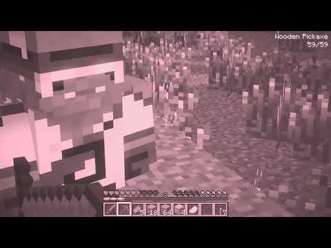 1 HEROBRINE VS 100,000 TNT IN MINECRAFT   IS HE REAL HEROBRINE LIFE ANIMATION E