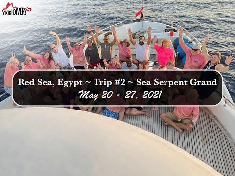 Y-kiki Trip Videos   The Red Sea with Y-Kiki