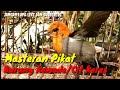 Masteran Ampuh Suara Burung Kemade Cit Keres  Mp3 - Mp4 Download