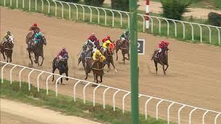 Vidéo de la course PMU PREMIO ALICANTE