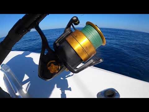 Deep Sea Fishing For BIG Fish! *Freeport Tx*