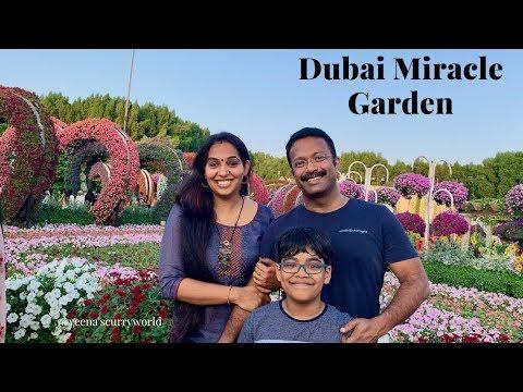 ദുബൈയിലെ പൂക്കളും പിന്നെ ഞങ്ങളും ||Dubai Miracle Garden 2019 ||  Weekend Vlog || Ep:668