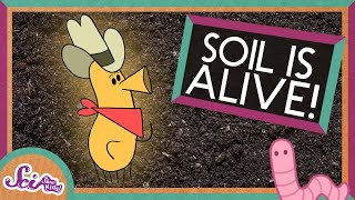 Soil Is Alive!