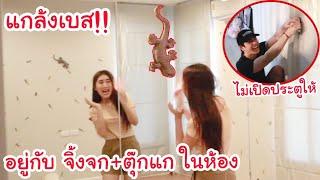 แกล้งเบส!! ให้อยู่กับ จิ้งจก+ตุ๊กแก ในห้องคนเดียว!! สิ่งที่เบสกลัวที่สุด!! (...เบสโกรธจริงๆ)