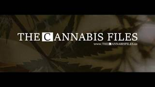 The Cannabis Files #005 feat Scott Bates