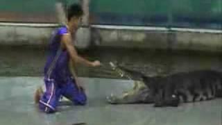 Ataque del cocodrilo